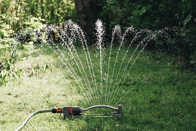 Rasen bewässern mit Rasensprenger