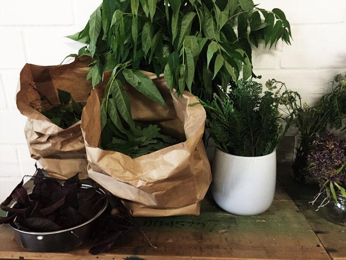 Blätter für Bundle dye