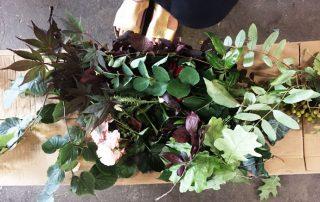 Färben mit Pflanzenfarbe still garments