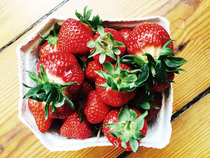 Gartenblog Artikel über Erdbeeren