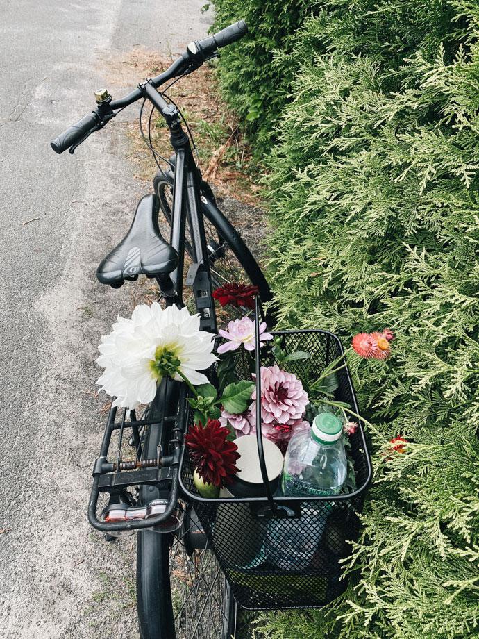 Fahrrad Blumen Garten transportieren