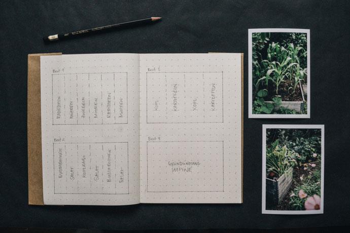 Garten mit Fotos dokumentieren