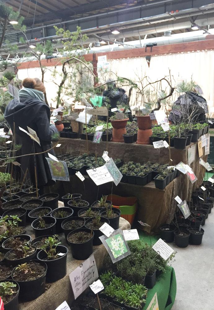 Bio Steuden und Sträucher auf der Gartenträume Berlin