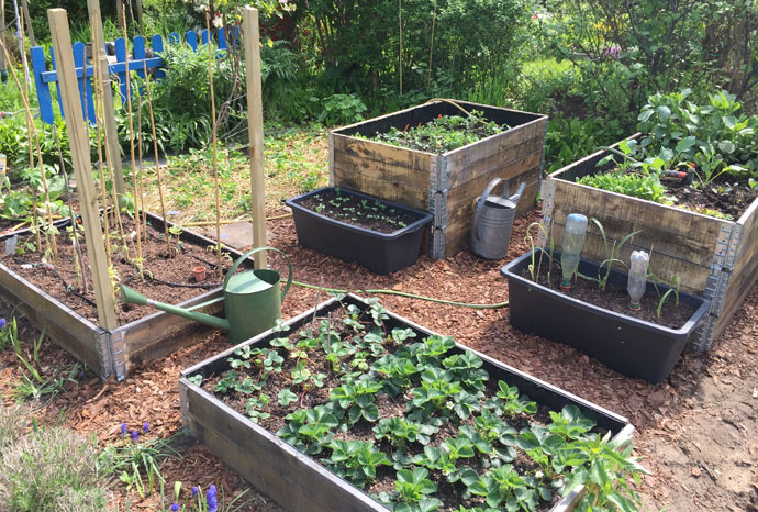 Garten Hochbeete gießen