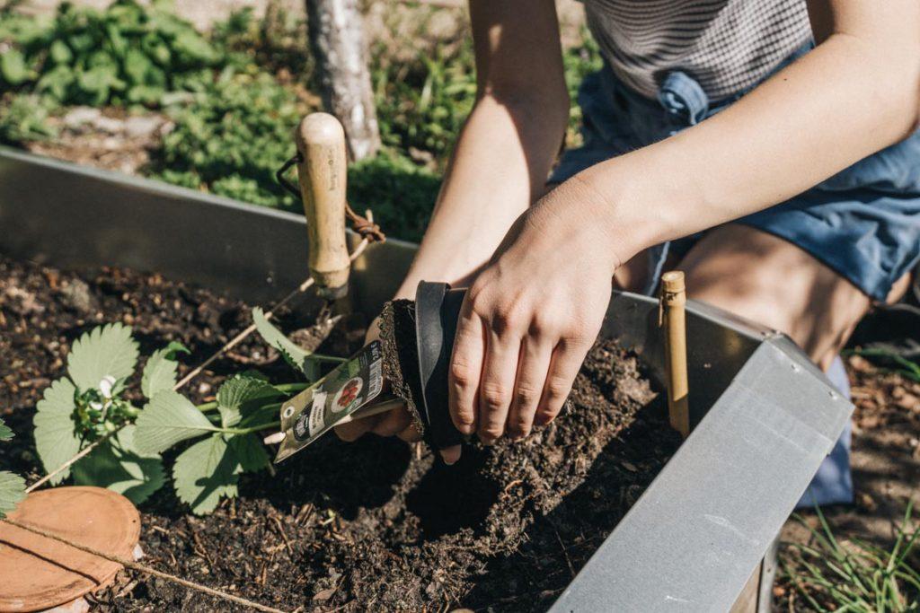 Pflanzen beschriften