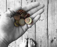 Was kostet ein Schrebergarten