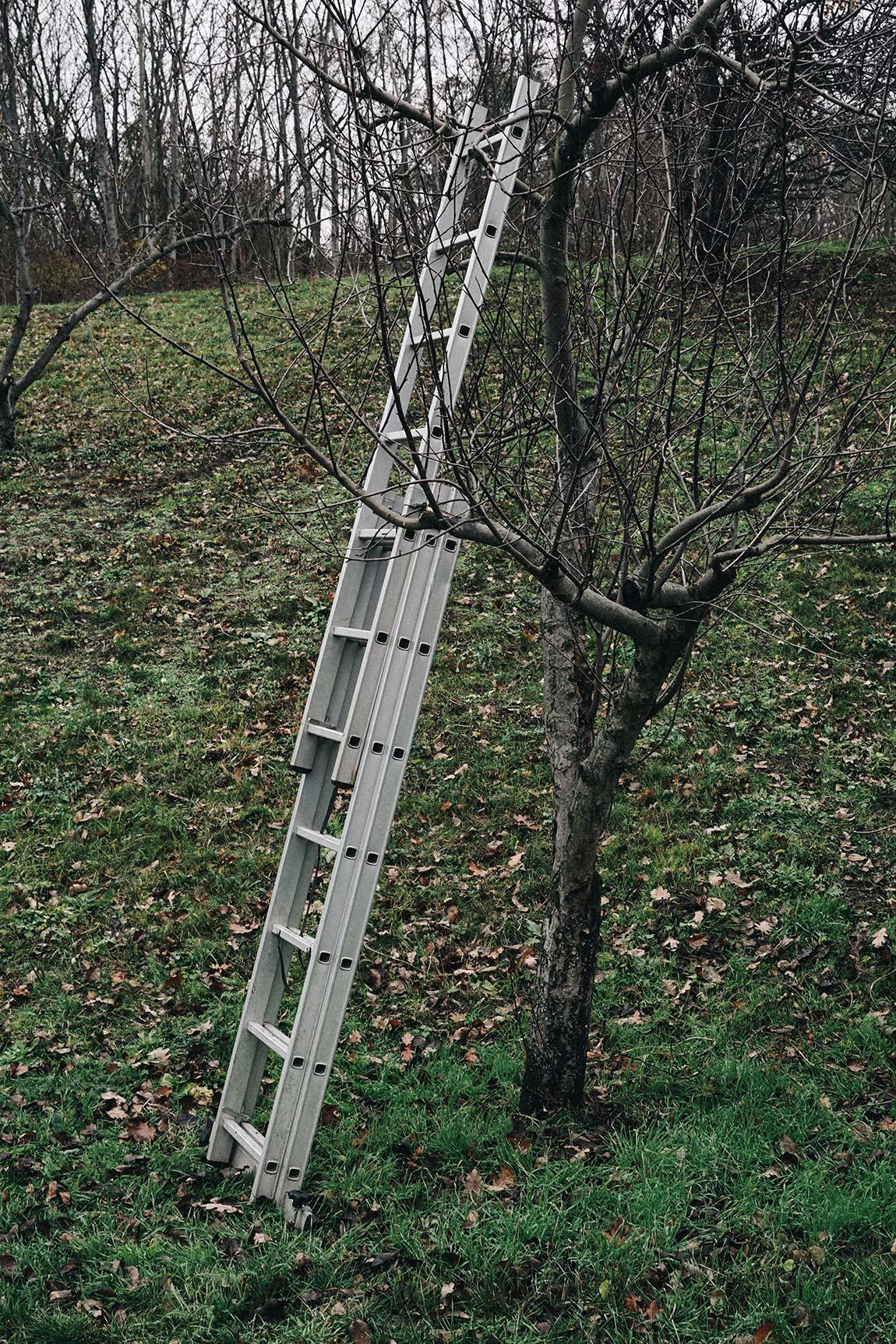 Garten Leiter richtig aufstellen