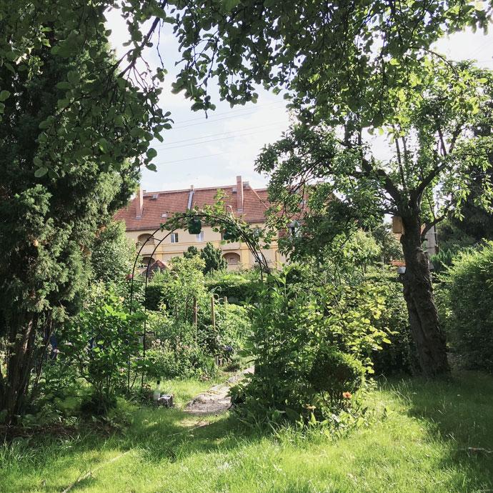 Geliebte Am seidenen Faden - alte Obstbäume im Schrebergarten - Gartenblog #FV_19