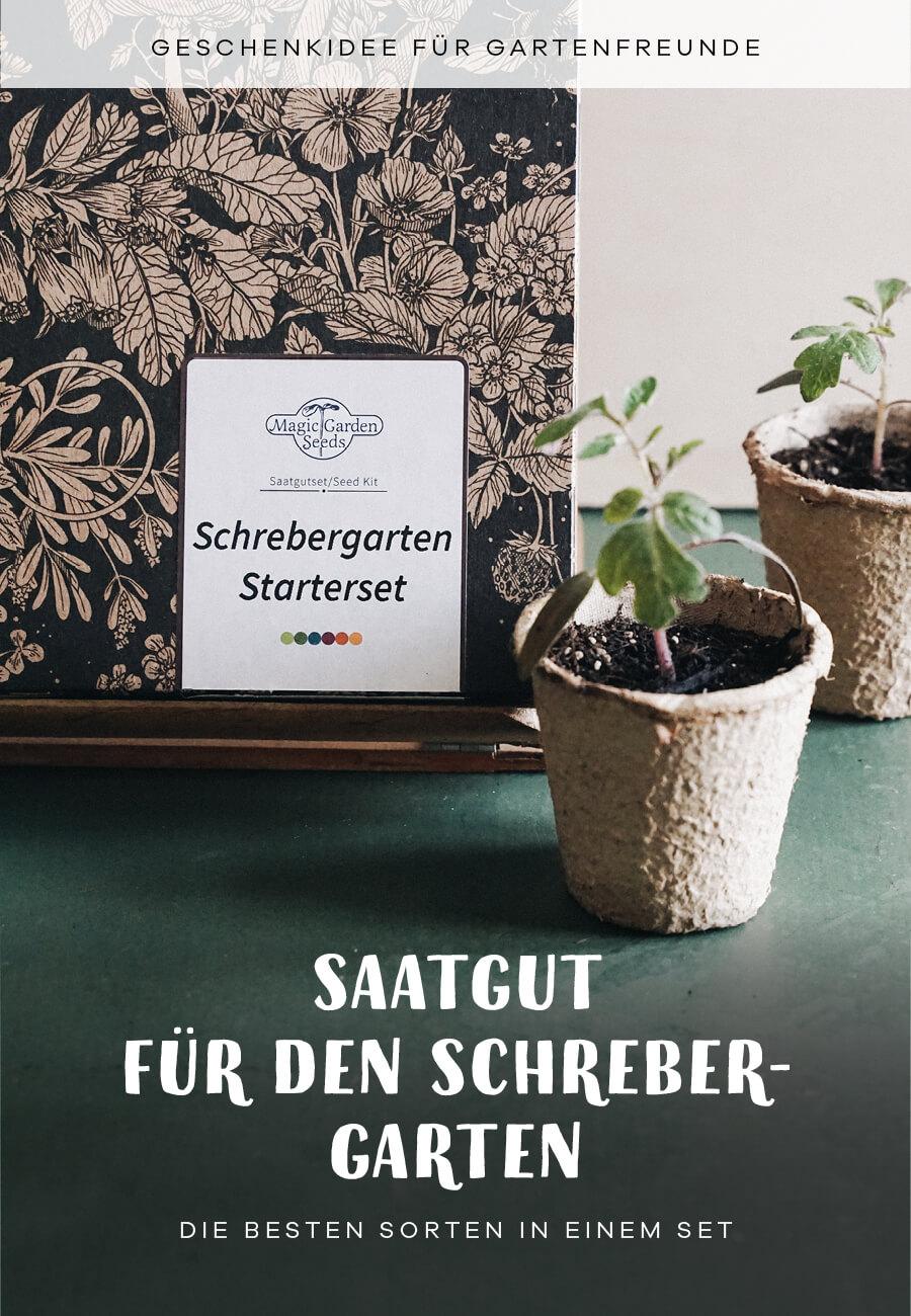 Saatgut Samen Geschenk Idee Schrebrgarten