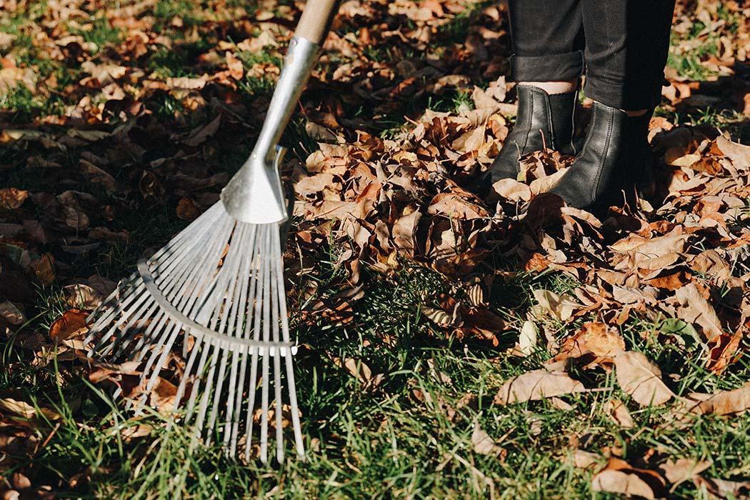 Checkliste, um Deinen Schrebergarten winterfest zu machen