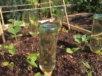 Terrakottakegel Bewässerung